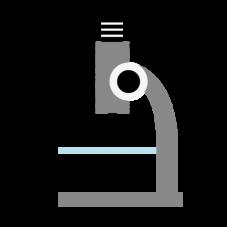 顕微鏡検査18